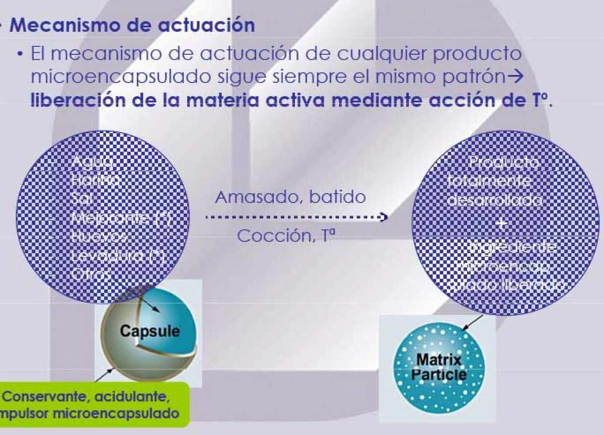 Microencapsulado - Mecanismo de acción